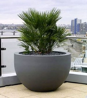 Planta Artificiala Palmier exterior 140cm