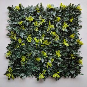 Perete plante artificiale Aglaia odorata 50x50