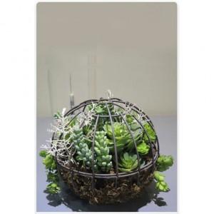 Plante artificiale suspendate AN-449