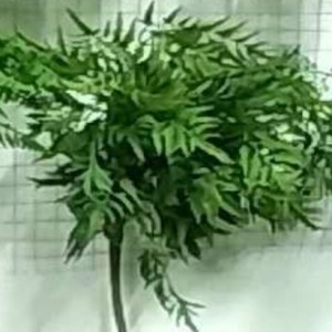 PLANTE ARTIFICIALE DECORATIVE FAD88